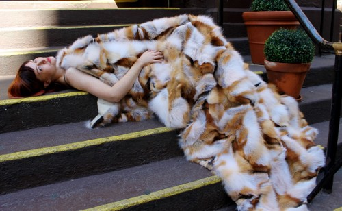 Red Fox Fur Blanket (6)