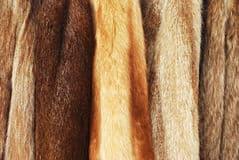 fur-coats-22350195