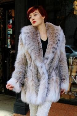 Fluffy Canadian Lynx Fur Stroller Shawl Collar 844 Image