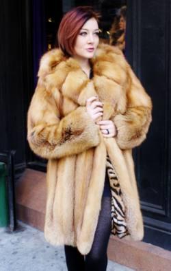 Classic Sporty Red Fox Fur Stroller Hooded Cross Cut Horizontal