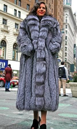 Full Length Silver Fox Fur Coat Cross Cut Tuxedo Fronts 7634 Image
