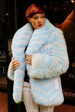 Blue Gray Striped Fox Fur Jacket Image