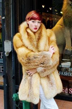 Beautiful Red Fox Fur Stroller 9967 Image