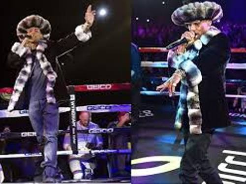 Rapper Fabulous Throne Boxing Wearing Chinchilla and Mink Fur Coat Image