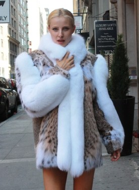 Beautiful American Cat Lynx Stroller White Fox Fur Trim from Marc Kaufman Furs New York City,Fur coats in Baltimore, fur coats in Chicago, fur coats in Detroit, fur coats in Los Angeles, fur coats in Detroit, fur coats in orange county, fur coats in Atlanta, fur coats in Denver, fur coats in Dallas, fur coats in Seattle, fur coats in Portland, fur coats in Santiago, fur coats in Portugal, fur coats in Madrid