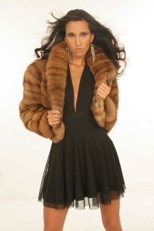 Young Canadian Golden Sable Fur Jacket