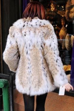 American Cat Lynx Fur Jacket 572 | MARC KAUFMAN FURS