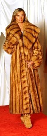 Amazing Full Length Canadian Golden Sable Fur Coat Large Shawl Collar