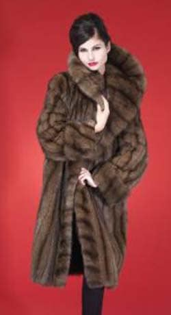 Russian Golden Sable and Natural Sable Fur Coats & Strollers