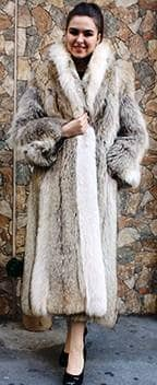 Coyote Fur Coat White Fox Fur Trim 9991 Image