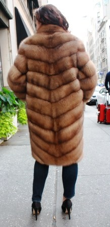 Marc Kaufman Furs Presents a baum martin sable fur stroller from Marc Kaufman Furs New York,Argentina,United Kingdom,Austria,Denmark,Norway,Australia,Finland,Saudi Arabia,Oman,Kuwait,Jordan,Egypt
