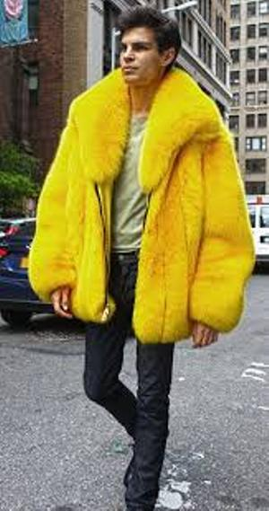 YELLOW-FOX-BOMBER-JACKEY