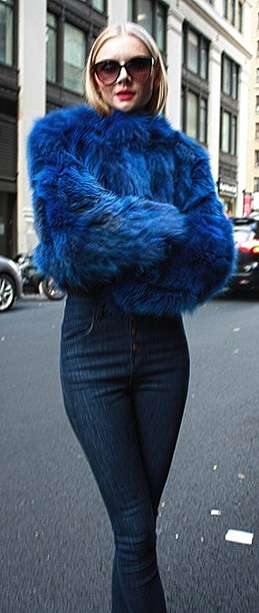 Blue Fox Fur Jacket