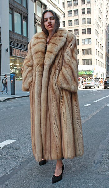 Full Length Golden Canadian Sable Coat