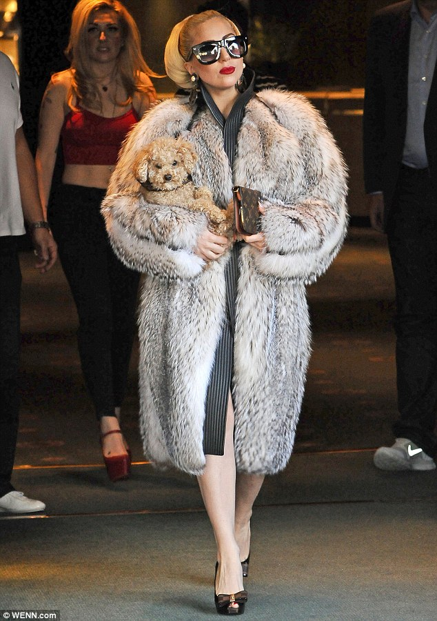 Fur Coats Back In Style