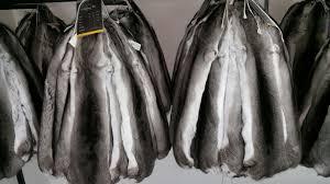 chinchilla skins
