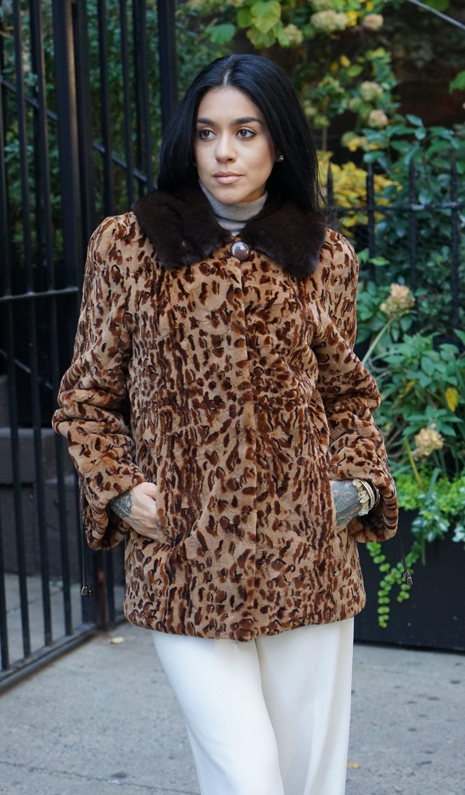Leopard f