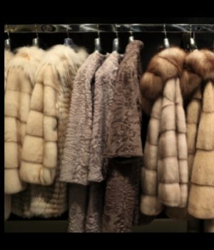 Cold fur storage