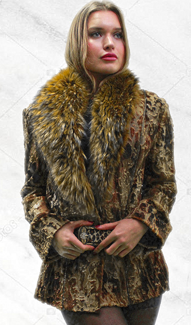 Sculpted Multi Colored Mink Fur Jacket Finish Raccoon Fur Collar Belt