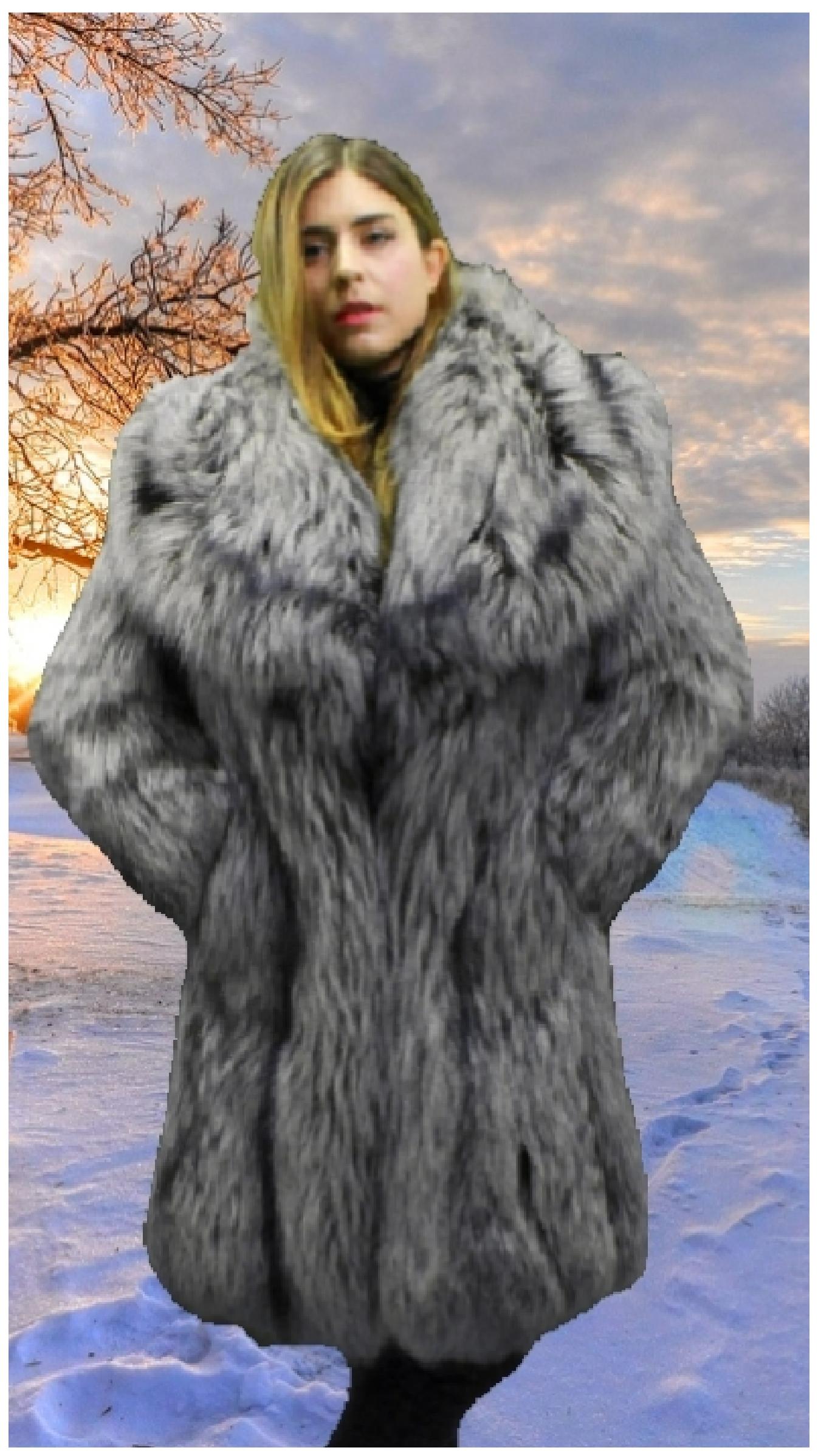63ac4c1466b Silver Fox Fur Coat 33219