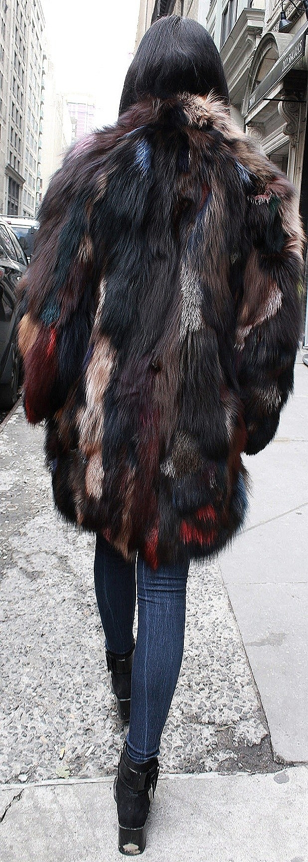 Colorful Fox Jacket