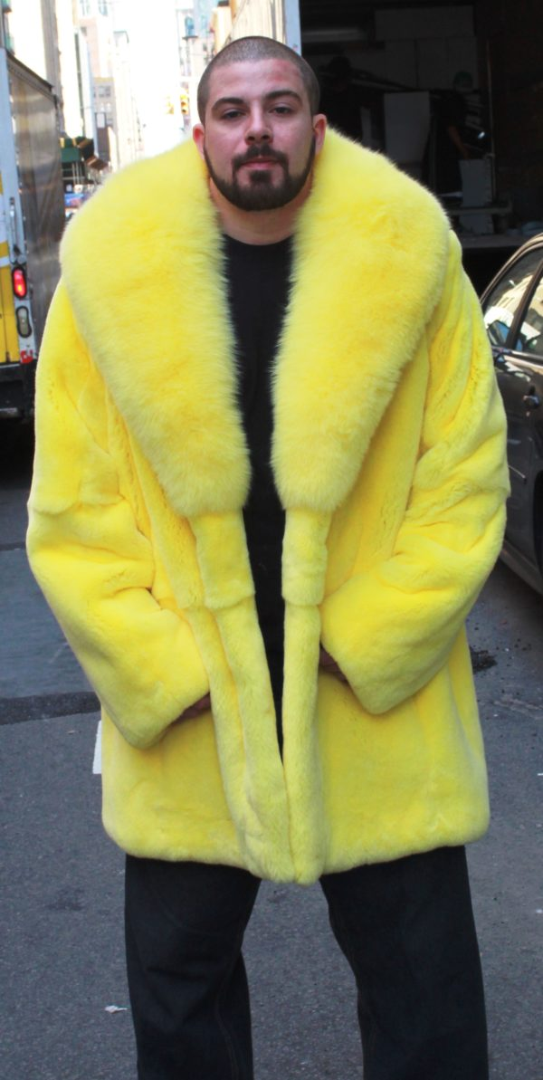 Yellow Rex Rabbit Stroller Fox Collar