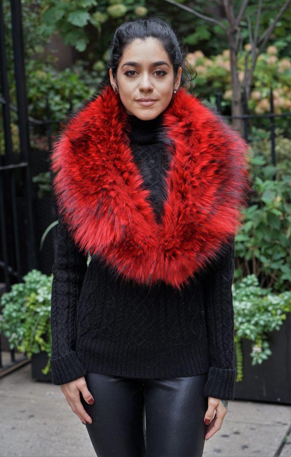 Red Finnish Raccoon Collar