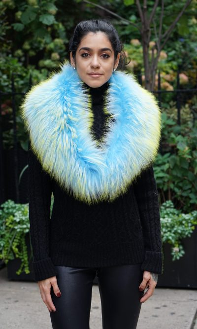 Sky Blue and Green Finnish Raccoon Collar