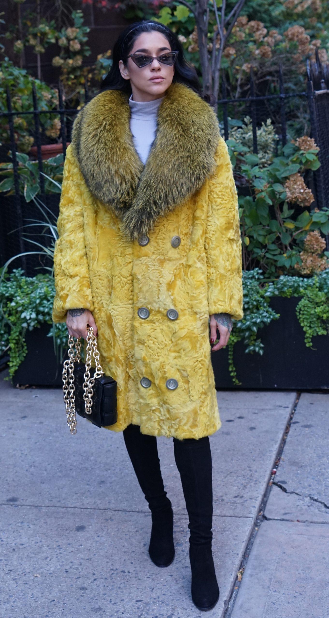 Yellow Persian Stroller Fox Collar