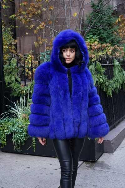 Royal Blue Fox Jacket Hood