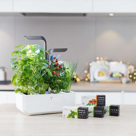 A modern planter that hold three plants